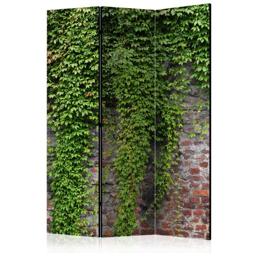 Paravento - Brick and ivy [Room Dividers] - Quadri e decorazioni
