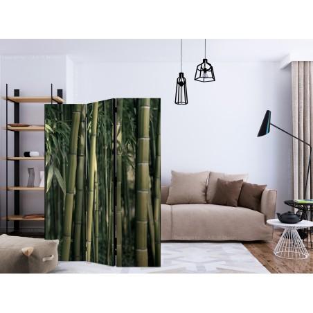 Paravento - Bamboo Exotic [Room Dividers] - Quadri e decorazioni