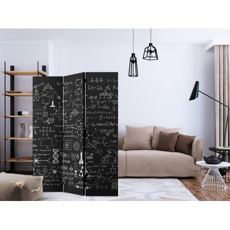 Paravento - Science on Chalkboard [Room Dividers] - Quadri e decorazioni