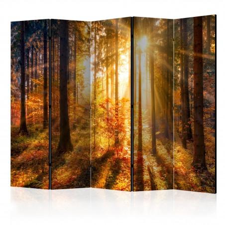Paravento - Autumn Awakening II [Room Dividers] - Quadri e decorazioni