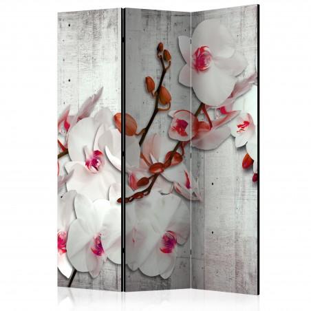 Paravento - Concrete Orchid [Room Dividers] - Quadri e decorazioni