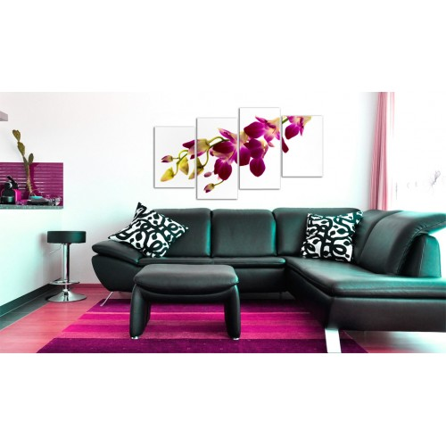 Quadro - Splendore dell'orchidea - Quadri e decorazioni