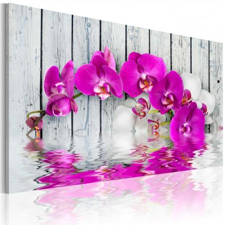 Quadro - armonia: orchidea - Quadri e decorazioni