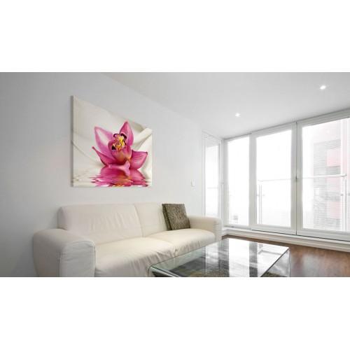 Quadro - Unusual orchid - Quadri e decorazioni