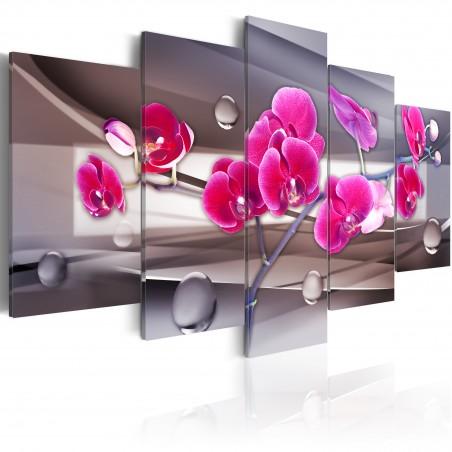 Quadro - Orchidea su sfondo attenuato - Quadri e decorazioni