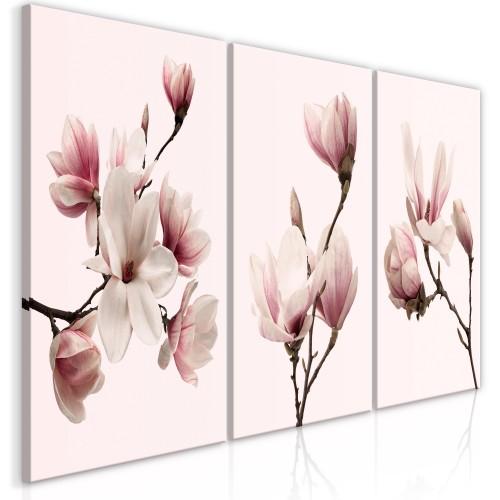 Quadro - Spring Magnolias (3 Parts) - Quadri e decorazioni