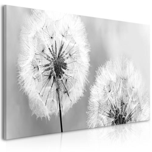 Quadro - Fluffy Dandelions (1 Part) Grey Wide - Quadri e decorazioni