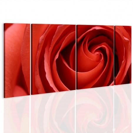 Quadro - Passionate rose - Quadri e decorazioni