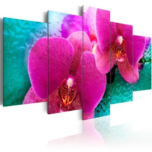 Quadro - Exotic orchids - Quadri e decorazioni