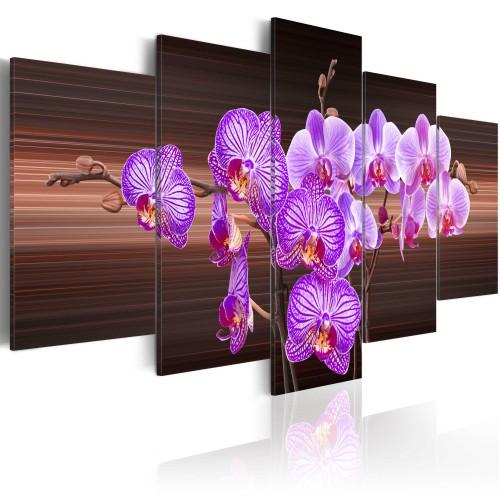 Quadro - Fiore di gioia - Quadri e decorazioni