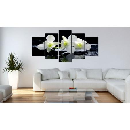 Quadro - Orchidee malinconici - Quadri e decorazioni