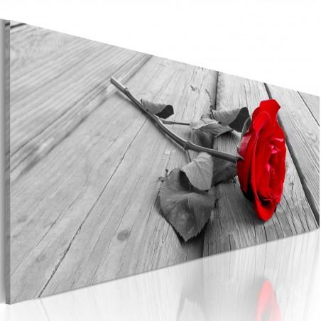 Quadro - Rosa del carmine - Quadri e decorazioni