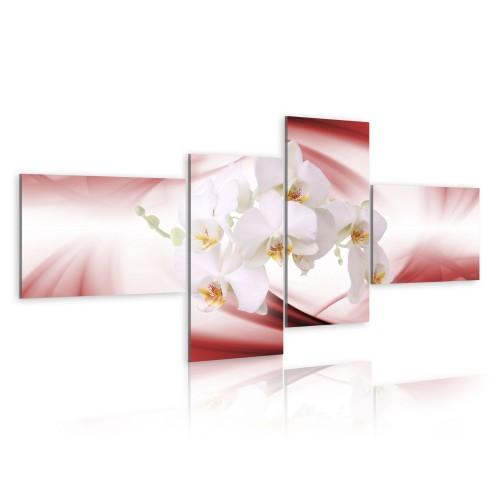 Quadro - Orchidea in rosa - Quadri e decorazioni