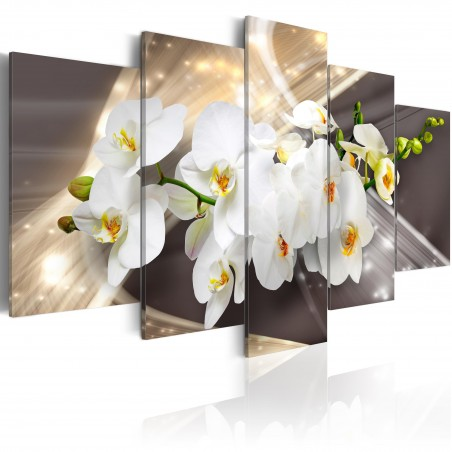 Quadro - Golden Sash - Quadri e decorazioni