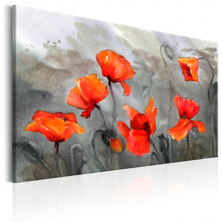 Quadro - Poppies (Watercolour) - Quadri e decorazioni