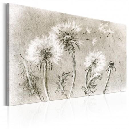 Quadro - Dandelions (Pencil Artwork) - Quadri e decorazioni
