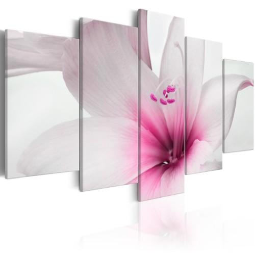 Quadro - Amarylis: Pink Charm - Quadri e decorazioni