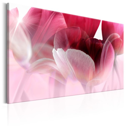 Quadro - Nature: Pink Tulips - Quadri e decorazioni