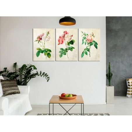 Quadro - Floral Trio (Collection) - Quadri e decorazioni