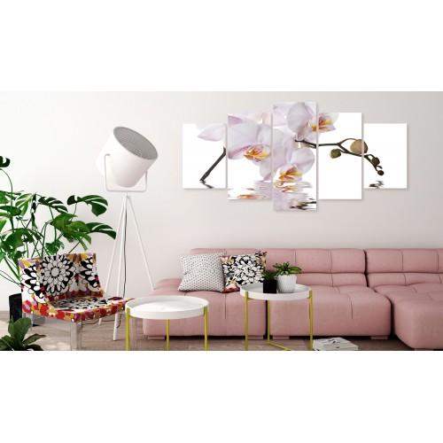 Quadro - Delightful Orchid (5 Parts) Wide - Quadri e decorazioni
