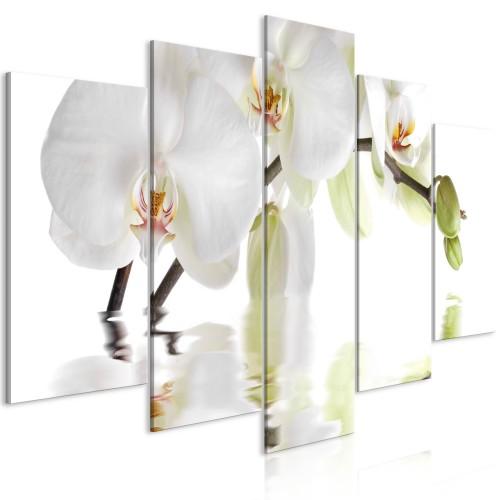 Quadro - Wonderful Orchid (5 Parts) Wide - Quadri e decorazioni
