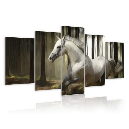 Quadro - Cavallo in continua corsa - Quadri e decorazioni