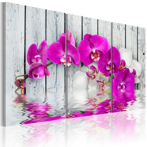 Quadro - armonia: orchidea - trittico - Quadri e decorazioni