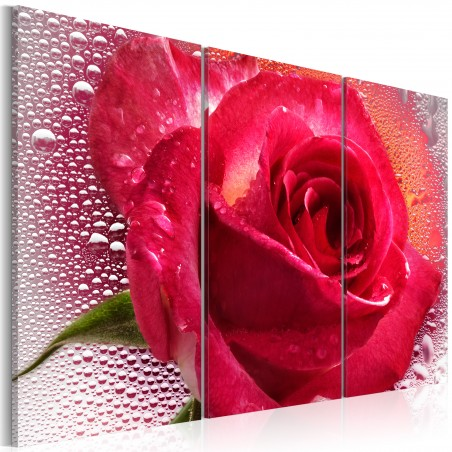 Quadro - Lady Rose - triptych - Quadri e decorazioni