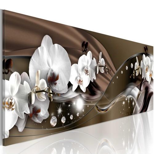 Quadro - Cioccolata danza di orchidea - Quadri e decorazioni