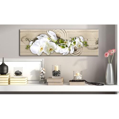 Quadro - Desert Flower - Quadri e decorazioni