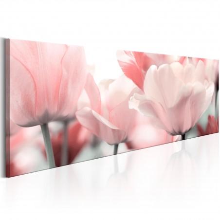Quadro - Pink Tulips - Quadri e decorazioni