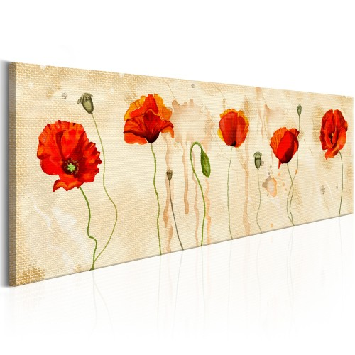 Quadro - Tears of Poppies - Quadri e decorazioni