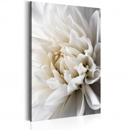 Quadro - White Dahlia - Quadri e decorazioni