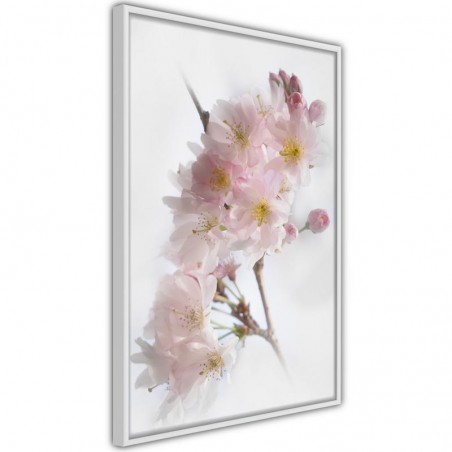 Poster - Scent of Spring