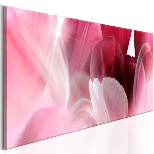 Quadro - Flowers: Pink Tulips - Quadri e decorazioni