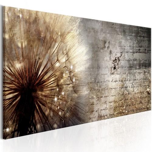 Quadro - Dandelion on Concrete - Quadri e decorazioni