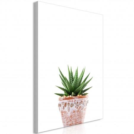 Quadro - Succulents In Pot (1 Part) Vertical - Quadri e decorazioni