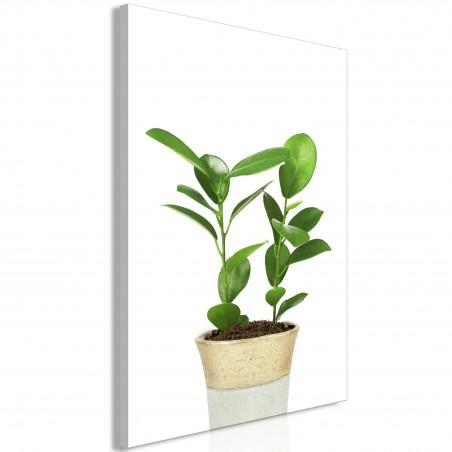 Quadro - Plant In Pot (1 Part) Vertical - Quadri e decorazioni