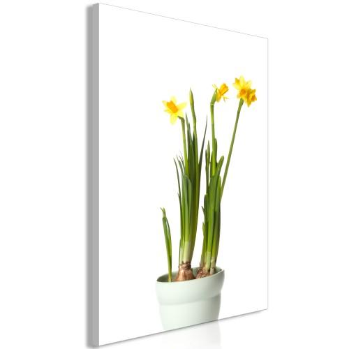 Quadro - Narcissus (1 Part) Vertical - Quadri e decorazioni