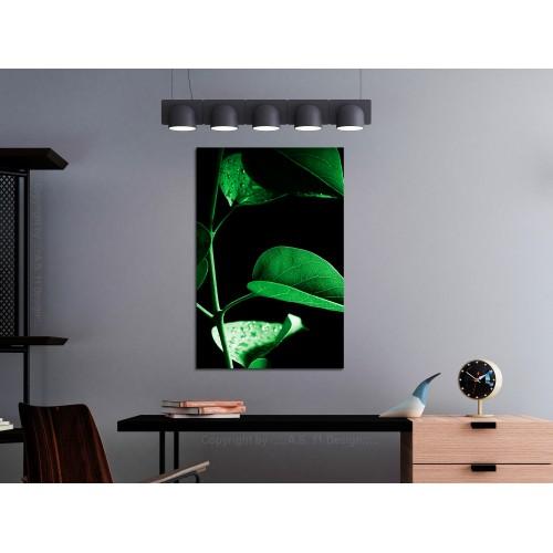 Quadro - Plant in Black (1 Part) Vertical - Quadri e decorazioni