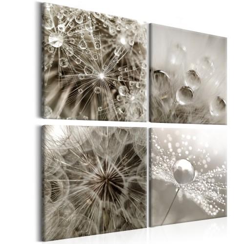 Quadro - Grey Dandelion - Quadri e decorazioni