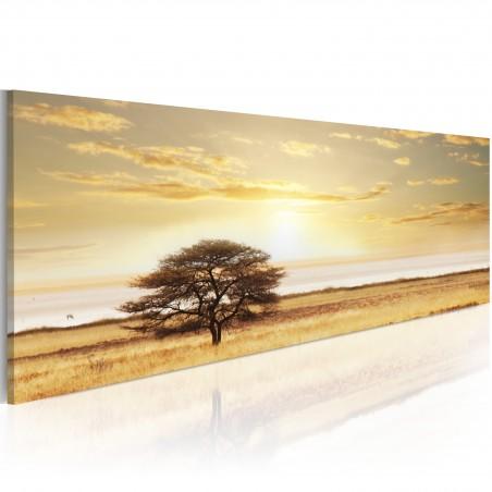 Quadro - Lonely tree on savannah - Quadri e decorazioni