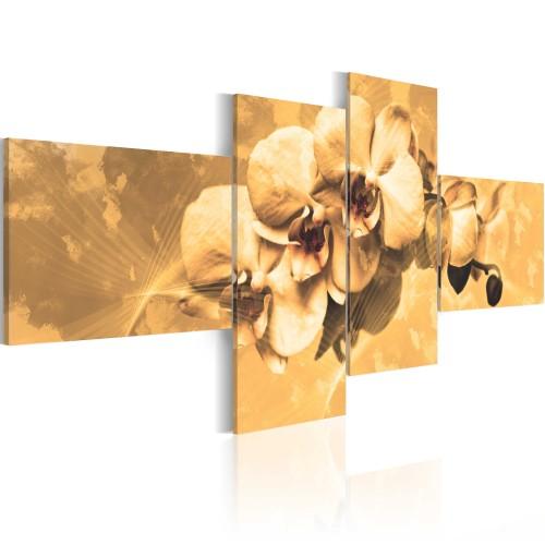 Quadro - Orchidee in seppia - Quadri e decorazioni