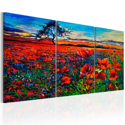 Quadro - Valley of Poppies - Quadri e decorazioni