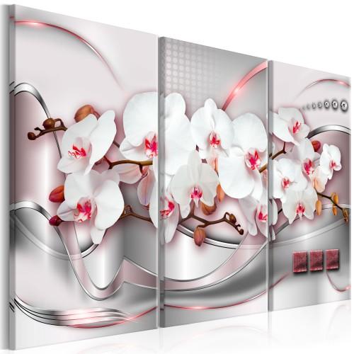 Quadro - Wonderful Orchids I - Quadri e decorazioni